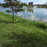 Photo of Lakes Regional Park
