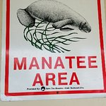 Manatee Observation & Education Center의 사진