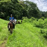 Discovery Horseback Tours照片