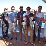 A great haul on our Half Day Fishing Charter - available all year round