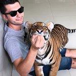 Damnoen Saduak Tiger Zoo Foto