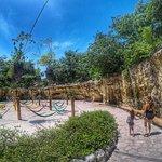 صورة فوتوغرافية لـ Xenses Park
