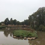 Yarkon River and Park Hayarkon