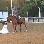 Foto van Caballerizas Reales de Cordoba