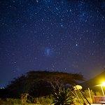 Glamping in Pongola Game Reserve bush