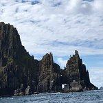Blasket Islands Eco Marine Tours Foto