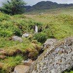 Foto van Loch Lomond National Nature Reserve