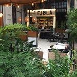 Photo of Fjola