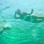 Photo of Ducks Diving Superior