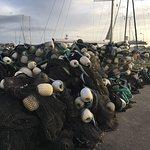 Fiske-garn på havnen