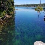 Foto de Clear Lake