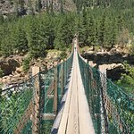 Bild från Kootenai Falls & Swinging Bridge