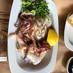 Fresh grilled squid