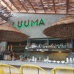 Photo of L U U M A Gathering Bar