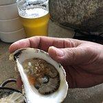 Foto de Eventide Oyster Company