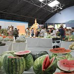 The National Heirloom Exposition was launched from The Seed Bank