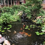 I love the pond. I am going to make one.. stay tuned!!