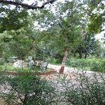 Фотография Indroda Nature Park