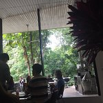 The little walkway to the cafe is alluring and calming .great atmosphere as the glass is so clea