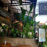 Photo of Vibe Cafe