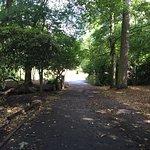 Sutton Park National Nature Reserve