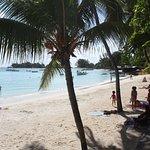 Photo of Pereybere Beach