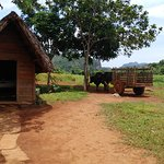Photo of Discover Vinales