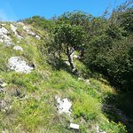 Foto de Sentiero Natura San Vittore