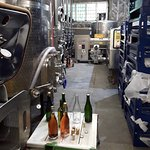 Inside the winemaking area.