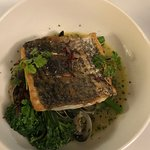 Grilled barramundi with broccolini and pippies in herbed seafood stock