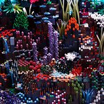 Go on an Underwater LEGO® Quest to discover mysterious sea creatures!