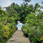 To the beach path