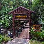 Foto de Namtok Phlio National Park