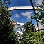 Crossrail Place Roof Garden照片