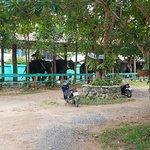 Фотография Ban Chang Thai - Elephant Camp
