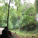 Smallin Civil War Cave의 사진