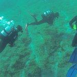 Foto de Draulik Dive Center