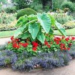 Foto de Annapolis Royal Historic Gardens