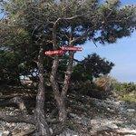 Foto de Osorscica – mountaineering trail