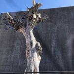 Photo de TEA Tenerife Espacio de las Artes