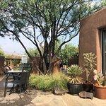 Xetava Gardens Cafe Foto
