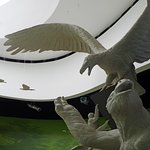 Foto de Biomuseo