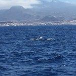 Foto van Mar de Ons