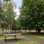 Beautiful birch trees grace the picnic area. Choose a table in sum or shade...watch your kids on