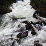 Foto de Cascade Canyon Trail