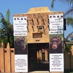 wejście do Instytutu Szympansów 2