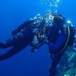Foto di Orca Diving Ustica