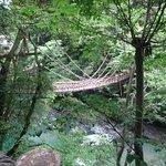 山奥の吊り橋