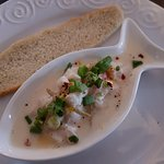 Scallop ceviche with rhubarb