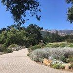Foto van Santa Barbara Botanic Garden